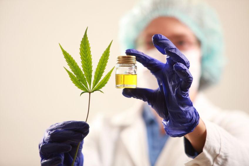 Top 5 des usages thérapeutiques du cannabis